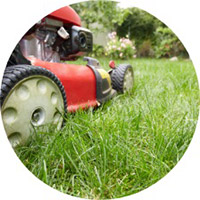 lawn-mowing-service
